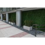 Hedge Walls Customize Service