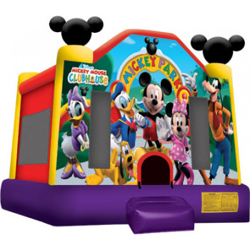Mickey Mouse Rental