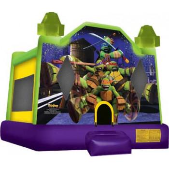 Ninja Turtle Bouncer